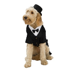 Dapper Dog Costume 100-186175