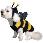 Buzzing Bee Dog Costume 100-194175