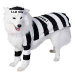Prisoner Dog Pet Costume 100-108665