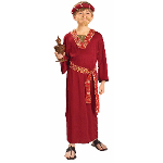 Burgundy Wiseman Child Costume 100-196293