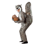 Squirrel Adult Costume 100-199643