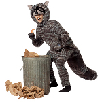 Raccoon Adult Costume 100-199644