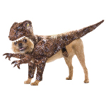 Animal Planet Raptor Pet Costume 100-212008