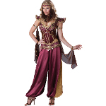 Desert Jewel Adult Costume 100-213016