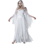 Haunting Beauty Adult Costume 100-213023