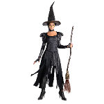 Oz The Great Wicked Witch of the West Adult Costume 100-217648