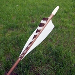 Traditional Hunter Arrows Dozen