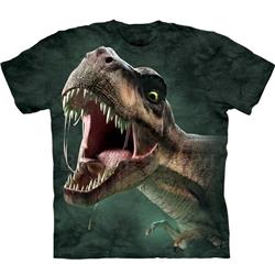 T-Rex Roar Youth's Tee Shirt 43-1535670