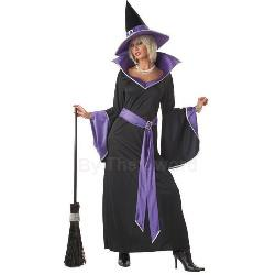Incantasia The Glamour Witch Adult Costume 100-145889